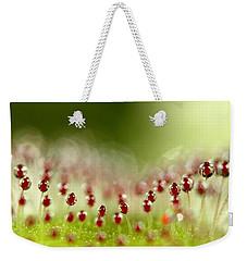 Sundew Weekender Tote Bag by Sharon Johnstone