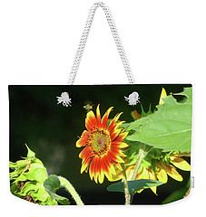 Sunflower 2016 4 Of 5 Weekender Tote Bag by Tina M Wenger