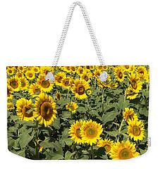Sunflower 2016 Weekender Tote Bag by Caroline Stella