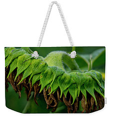 Weekender Tote Bag featuring the photograph Sunflower 2017 1 by Buddy Scott