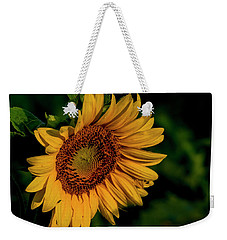 Weekender Tote Bag featuring the photograph Sunflower 2017 11 by Buddy Scott