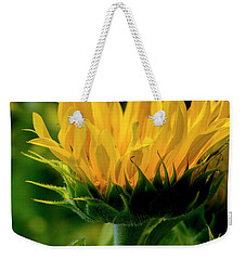 Weekender Tote Bag featuring the photograph Sunflower 2017 13 by Buddy Scott