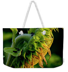 Weekender Tote Bag featuring the photograph Sunflower 2017 14 by Buddy Scott