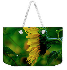Weekender Tote Bag featuring the photograph Sunflower 2017 3 by Buddy Scott