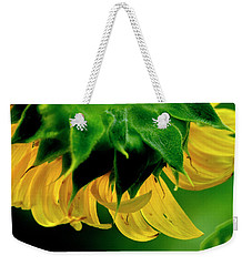 Weekender Tote Bag featuring the photograph Sunflower 2017 6 by Buddy Scott
