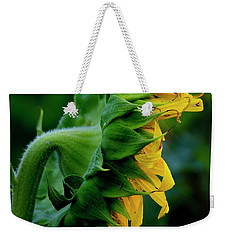 Weekender Tote Bag featuring the photograph Sunflower 2017 8 by Buddy Scott