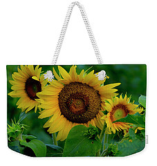 Weekender Tote Bag featuring the photograph Sunflower 2017 9 by Buddy Scott