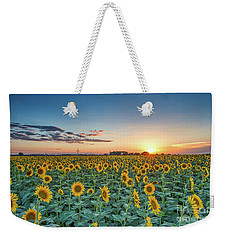 Texas Sunflowers At Sunset Weekender Tote Bag