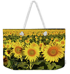 Weekender Tote Bag featuring the photograph Sunflower Faces by Ann Bridges