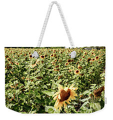 Weekender Tote Bag featuring the photograph Sunflower Field by Alexey Stiop