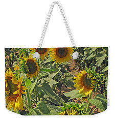 Sunflower Field Two Weekender Tote Bag