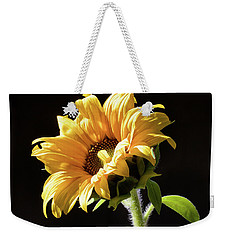 Sunflower Isloated On Black Weekender Tote Bag