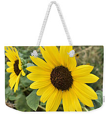 Weekender Tote Bag featuring the photograph Sunflower by James Fannin