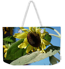 Sunflower, Lemon Queen, With Pollen Weekender Tote Bag