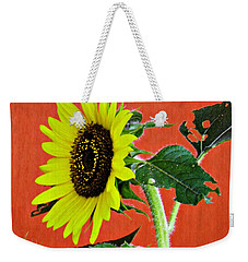 Weekender Tote Bag featuring the photograph Sunflower On Red 2 by Sarah Loft