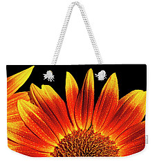Weekender Tote Bag featuring the photograph Sunflower Raindrops by Alan L Graham