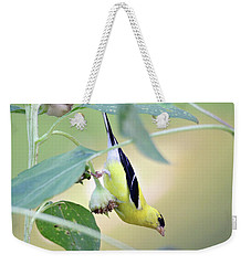 Weekender Tote Bag featuring the photograph Sunflower Seed Snack by Trina Ansel