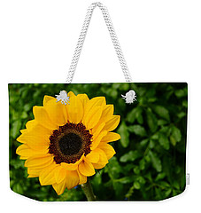 Sunflower Still Life 2 Weekender Tote Bag
