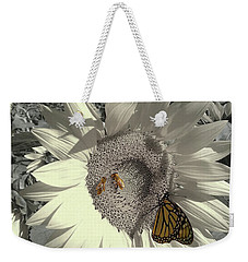Weekender Tote Bag featuring the photograph Sunflower Tint by Melinda Blackman