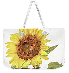 Weekender Tote Bag featuring the photograph Sunflowers 10 by Andrea Anderegg