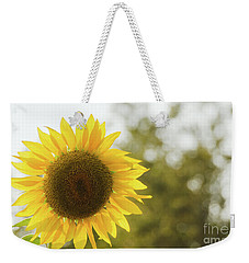Weekender Tote Bag featuring the photograph Sunflowers 12 by Andrea Anderegg