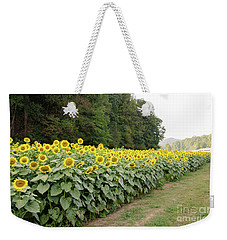 Weekender Tote Bag featuring the photograph  Sunflowers 6 by Andrea Anderegg