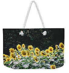 Weekender Tote Bag featuring the photograph Sunflowers 7 by Andrea Anderegg