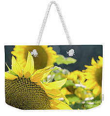 Weekender Tote Bag featuring the photograph  Sunflowers 8 by Andrea Anderegg