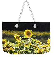 Weekender Tote Bag featuring the photograph Sunflowers 9 by Andrea Anderegg