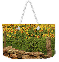 Sunflowers And Fence   Weekender Tote Bag
