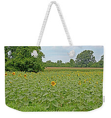 Weekender Tote Bag featuring the photograph Sunflowers by Linda Brown