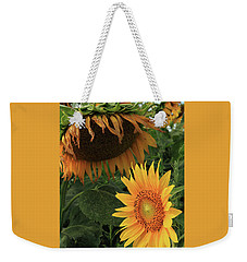 Sunflowers Past And Present Weekender Tote Bag