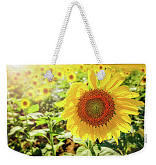 Weekender Tote Bag featuring the photograph Sunflowers by Robert Bellomy