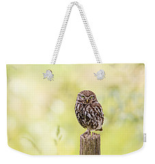 Sunken In Thoughts - Staring Little Owl Weekender Tote Bag by Roeselien Raimond