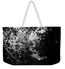Sunlight And Swan  Weekender Tote Bag