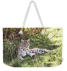 Sunlight Stop  Weekender Tote Bag