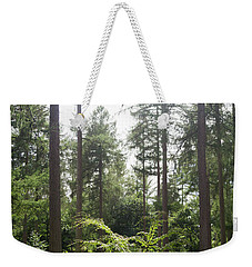 Weekender Tote Bag featuring the photograph Sunlight Through The Trees by Scott Lyons