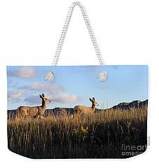 Sunlit Deer  Weekender Tote Bag