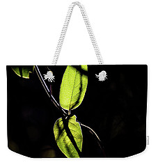 Sunlit Leaves Weekender Tote Bag by Jay Stockhaus