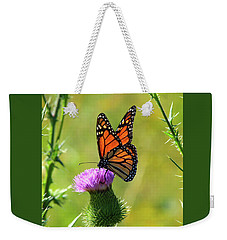 Sunlit Monarch  Weekender Tote Bag