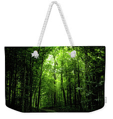 Weekender Tote Bag featuring the photograph Sunlit Woodland Path by Lars Lentz