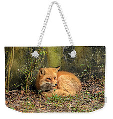 Sunning Fox Weekender Tote Bag by Debbie Green