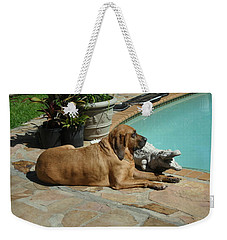 Sunning Weekender Tote Bag by Val Oconnor
