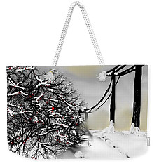 Sunny 28 Below Weekender Tote Bag