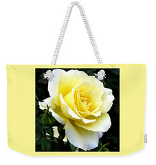 Weekender Tote Bag featuring the photograph Sunny Cream Rose by Will Borden