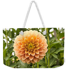 Weekender Tote Bag featuring the photograph Sunny Dahlia by Brian Eberly