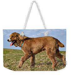 Sunny Stroll Weekender Tote Bag