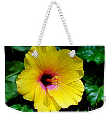 Weekender Tote Bag featuring the photograph Sunny Yellow Hibiscus by Sue Melvin