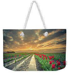 Weekender Tote Bag featuring the photograph Sunrise At Tulip Filed After A Storm by William Lee