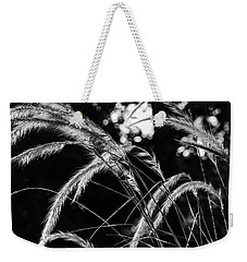 Weekender Tote Bag featuring the photograph Sunrise Grasses by Glenn DiPaola